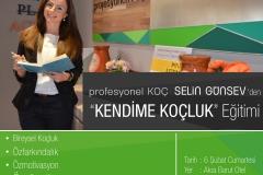 selingunsev-ucretli-2